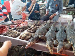 Pandémia mokré trhy nezastavila, v Indonézii sa stále predávajú živé netopiere či potkany